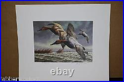 1982 1983 Federal Duck Stamp Print Print Signed and Numbered Stamp Mint