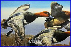 1988 Federal Waterfowl Duck Conservation Stamp Print Framed New Mint Redhead S/N