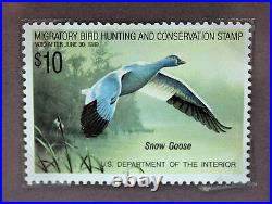 1989 Federal Waterfowl Snow Goose Conservation Stamp Print Framed New Mint S/N
