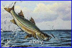 2007 Texas Saltwater Conservation Stamp Print Framed Mint New Snook Fish