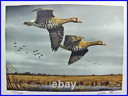 2011 Texas Waterfowl Duck Conservation Stamp Print Framed Mint Geese New