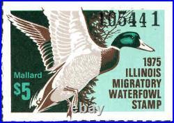 ILLINOIS #1 1975 STATE DUCK STAMP PRINT by R. E. Eschenfeldt NEVER FRAMED