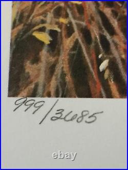 Minnesota Pheasant Print, 999/3685, James Killen 1985, S Stamp. Mint Condition