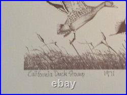 Mint 1971 First Of State California Duck Stamp Print Paul Johnson No Stamp
